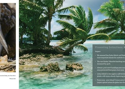 Island Conservation Annual Report spread